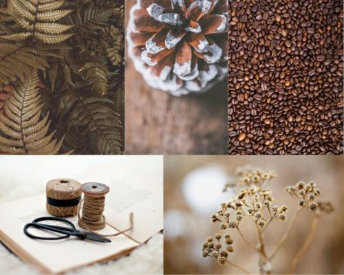color mood board brown